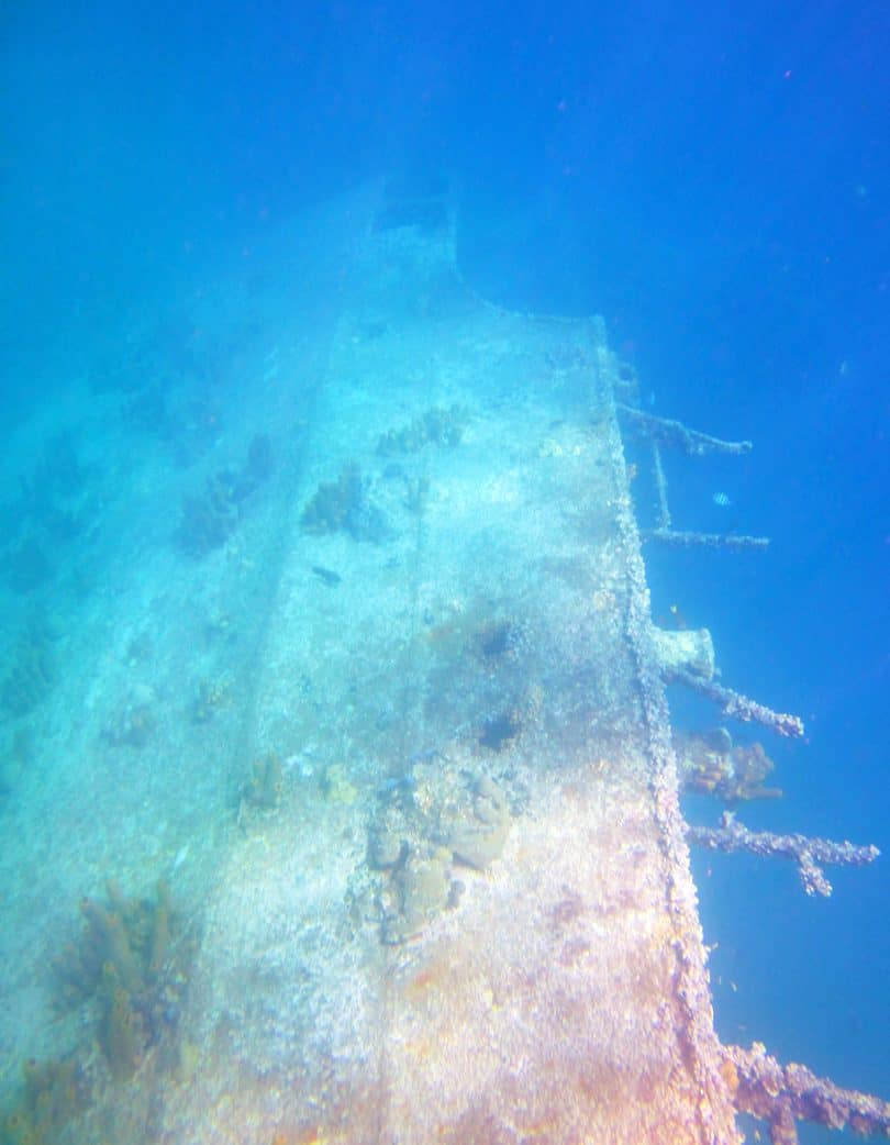 Tall Shipwreck De Palm Tours Snorkel Adventure Catamaran Tour