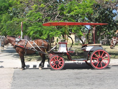 Varadero_horse and carriage_cuba