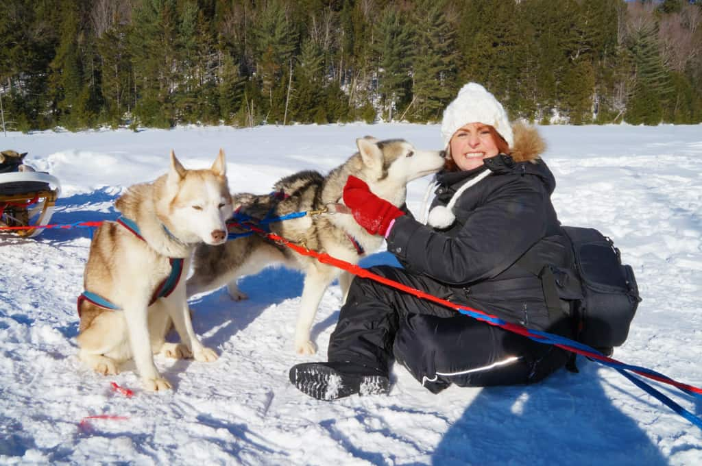 Winterdance-dog-sled-tour-giving and getting dog love