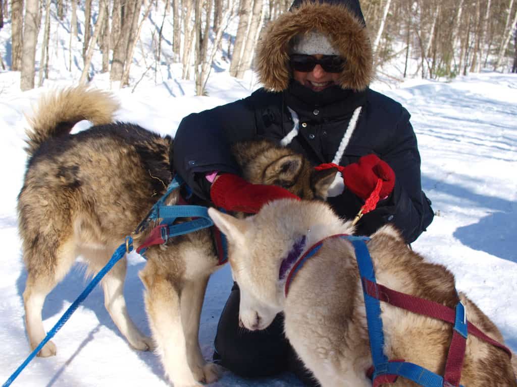 Winterdance-dog-sled-tour-meeting the dogs-mary