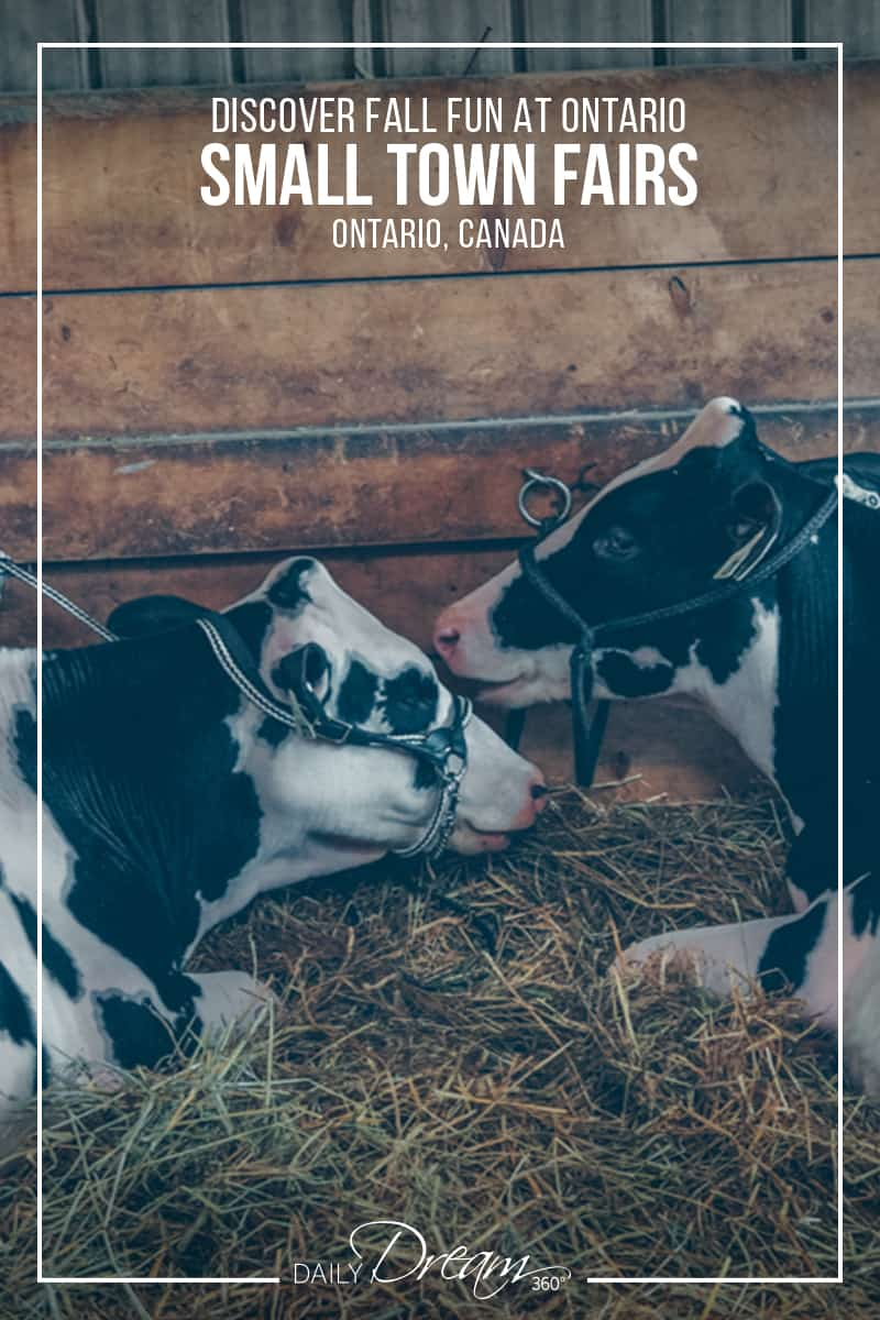 Ontario small towns are showcasing their best in a series of Agricultural Fall fairs. We have some details on a few of our favourite not to miss events. | #Ontario #fall #fairs #Canada |