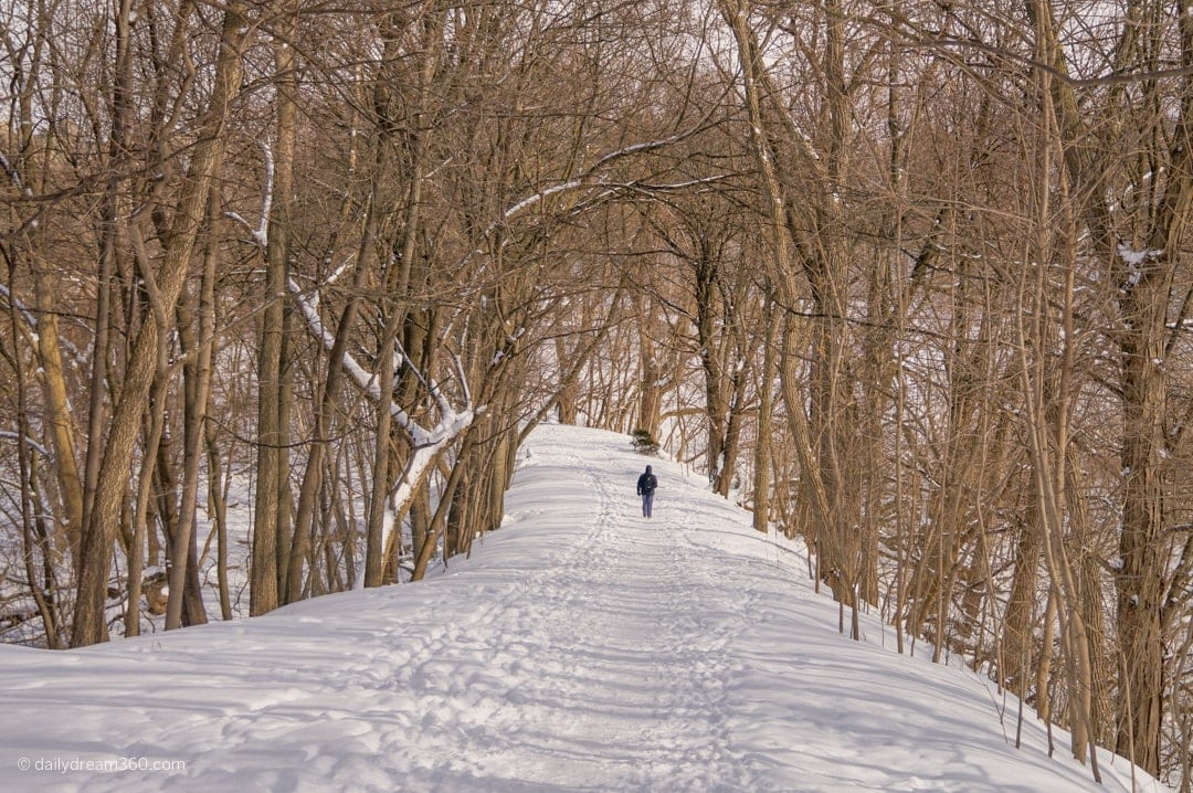 Snow covered walking trail in Thames Park London Ontario
