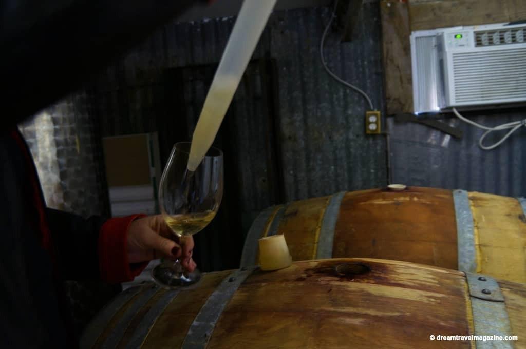 ON-Sarnia-Lambton-Alton Farms Winery_90