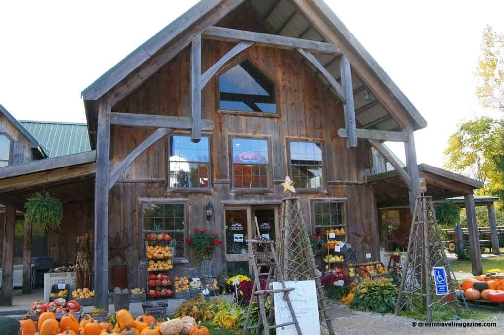 Twin-pines-orchard-cider-house-apple-farm-Thedford-Ontario-02