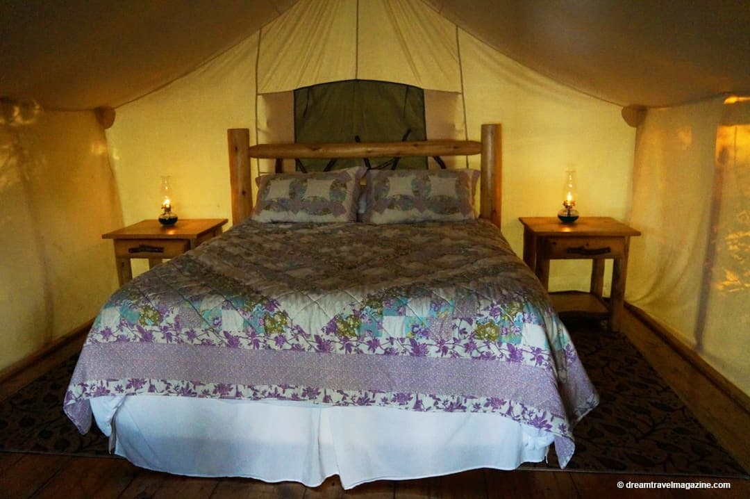 checking the tent for bugs Glamping-Oakwood-Escape-Dunnville-Ontario