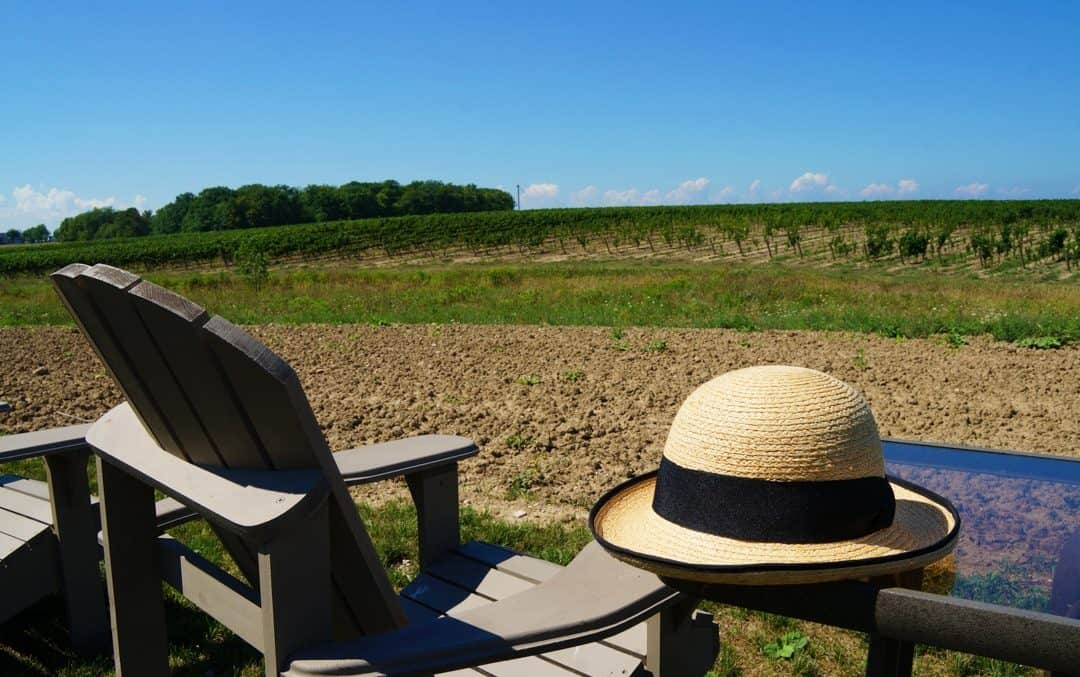 Travel Hats for Style and Sport with Tilley Endurables Raffia Hat -351