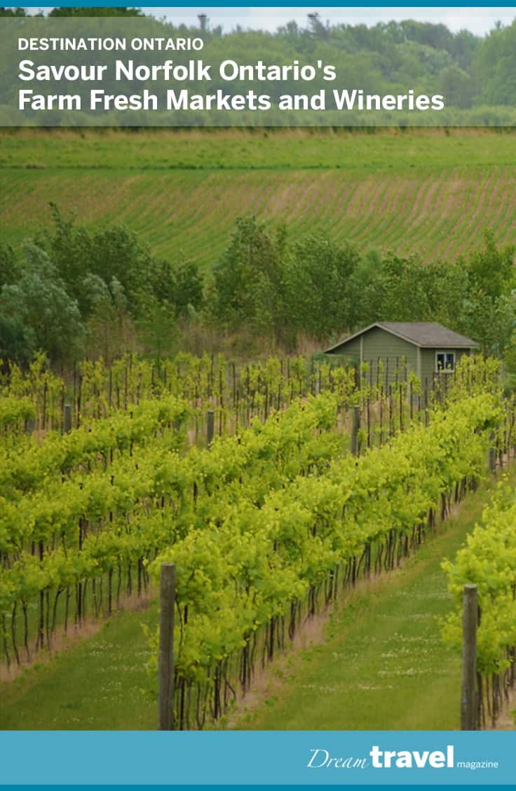 Discover the many farmers markets and wineries located in Norfolk Ontario. Wine tours and tastings are available throughout the region and local markets can be spotted along the way featuring the best of the regions harvest.