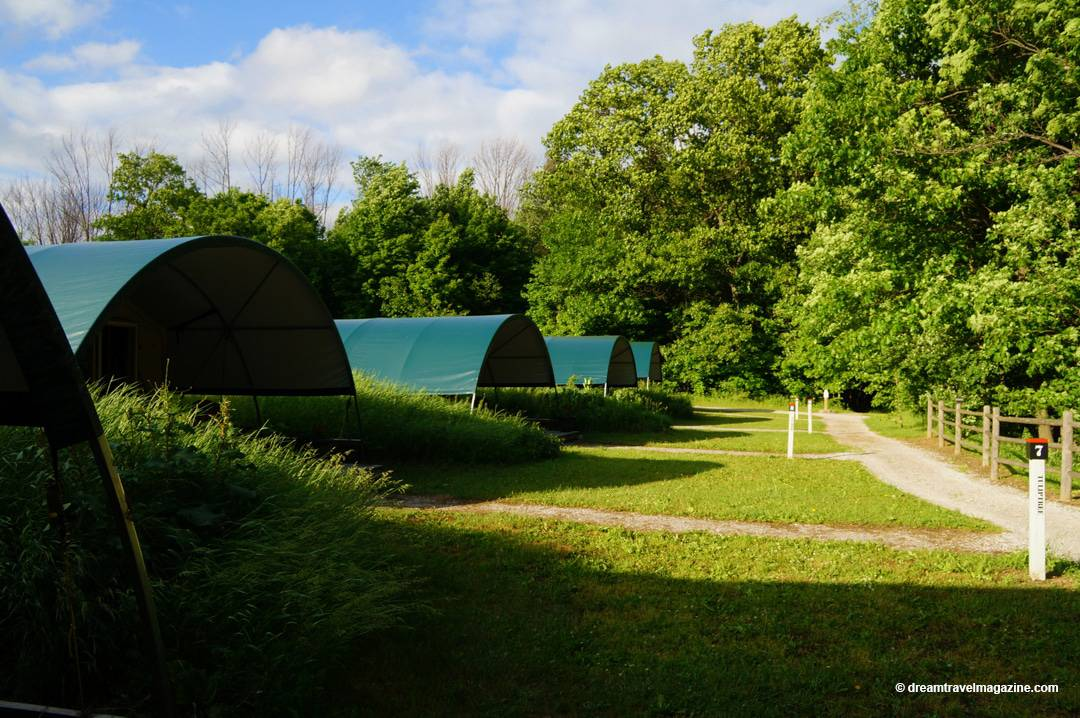 Row of Wilderness Suites outside Long Point Eco-Adventures Luxury Glamping Turkey Point Ontario