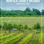 Winery vines and small house with text: Things to do in Norfolk County Ontario