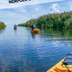 Kayaks in river with text: Things to do in Norfolk County Ontario