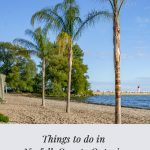Palm trees on beach with text Kayaks in river with text: Things to do in Norfolk County Ontario