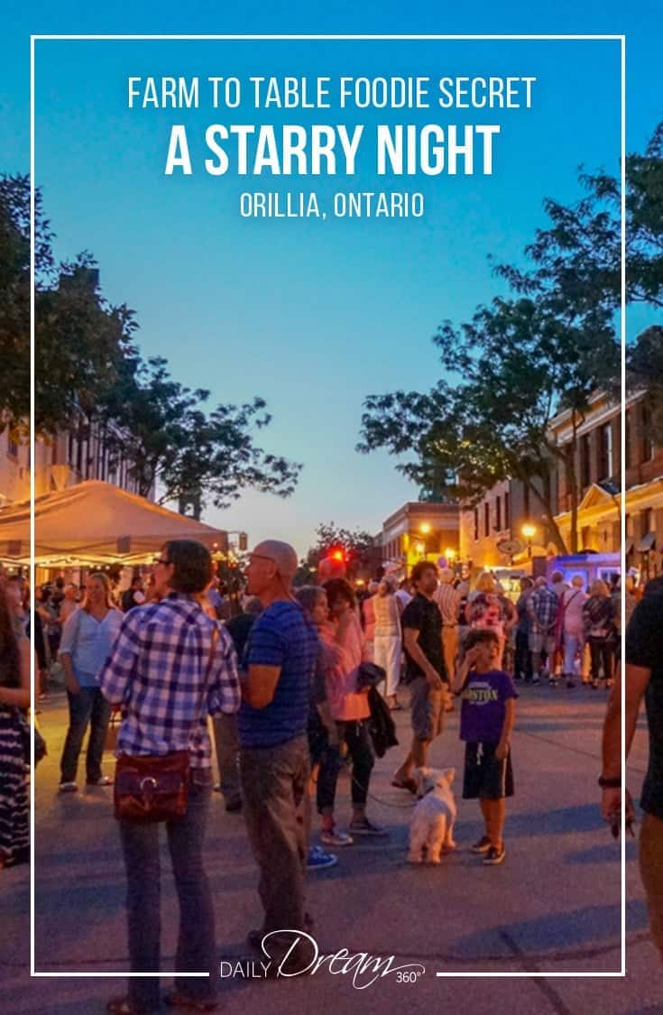 Each year, Orillia Ontario celebrates the close of the summer season with their annual A Starry Night Festival. The night's activities include a Farm to Table Dinner on main street, a public street art display and art displays in various stores and venues across the town. Winners of the annual Streets Alive project are also announced. It is a fabulous time to visit the region. | #Orillia #Ontario #roadtrip #smalltown #festival |