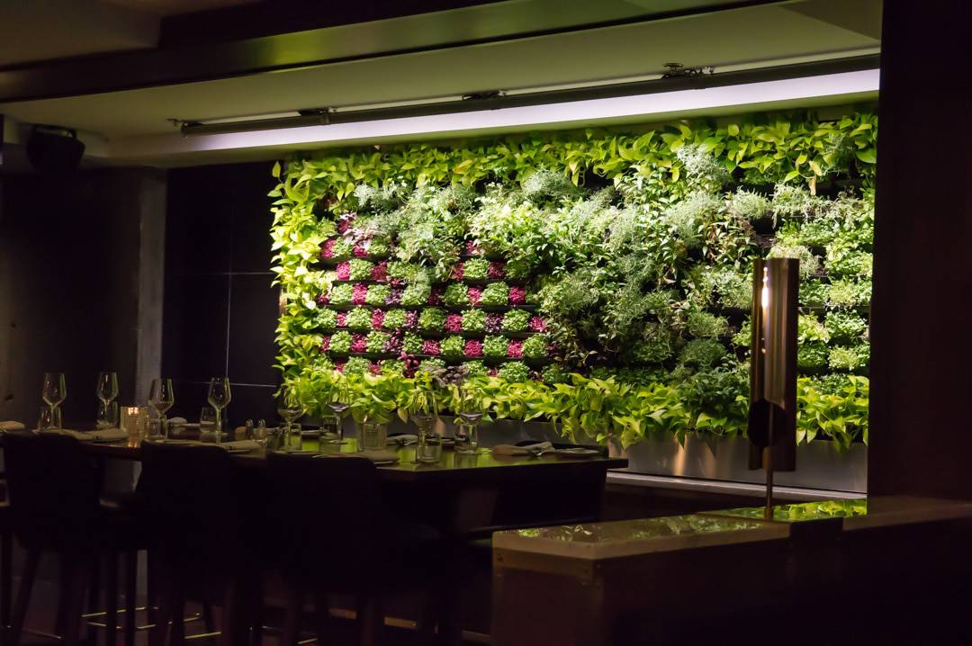 The green wall at Maggie Oaks Restaurant Montreal