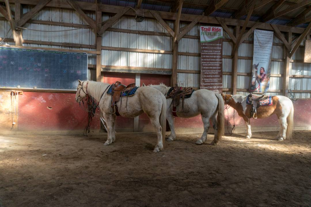 First time horseback riding experience at painted bar for Places to go horseback riding near me