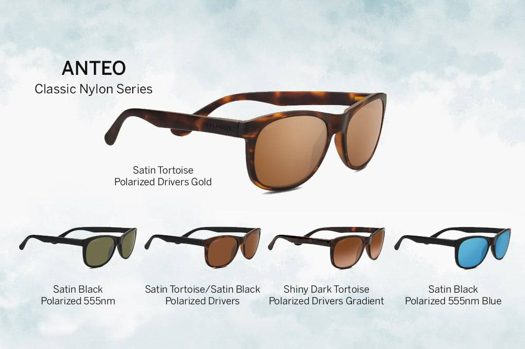 Anteo Serengeti Sunglasses 2018