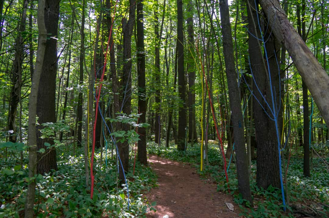 Couchiching Conservancy Art Trail