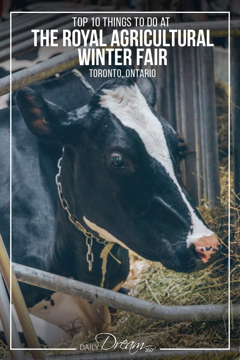 Top 10 Things to Do at The Royal Agricultural Winter Fair