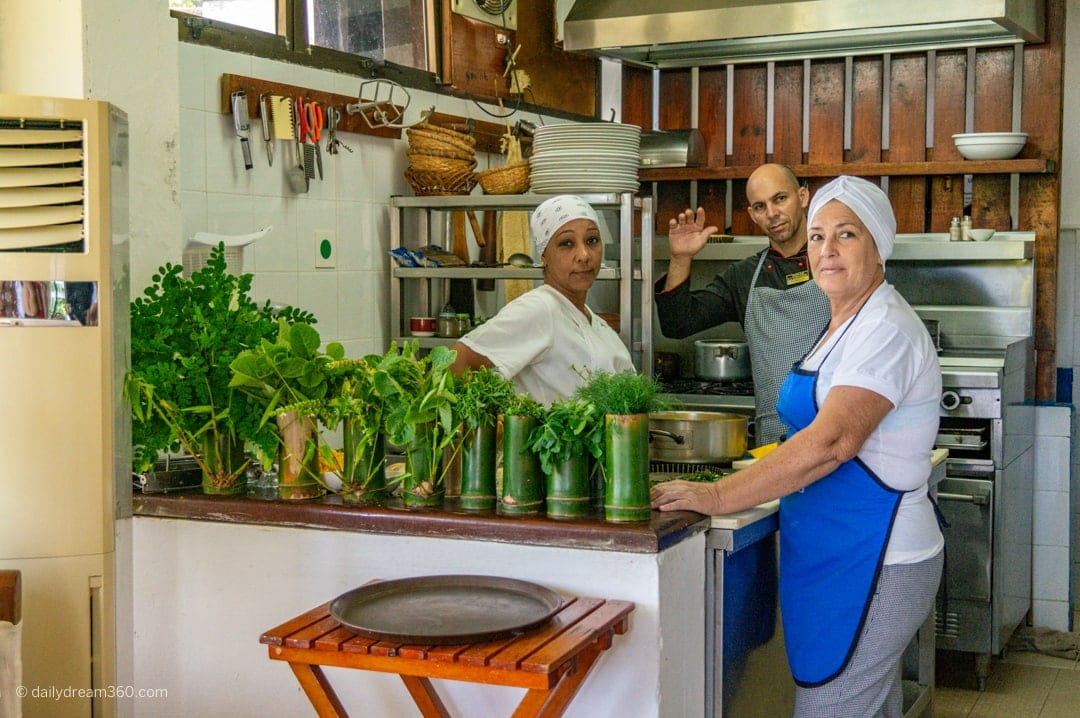 Kitchen filled with fresh herbs and vegetables, Vegetarian restaurant in Las Terrazas Eco Village Cuba Community