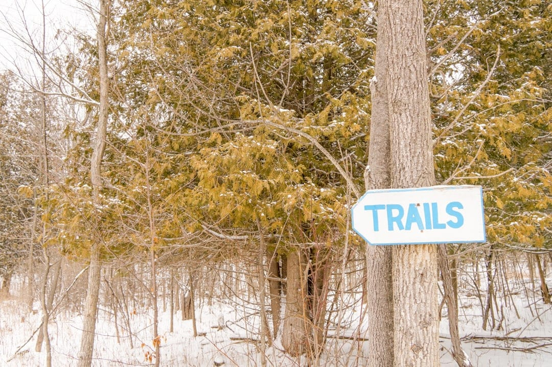 hiking trail sign on tree in winter at Viamede