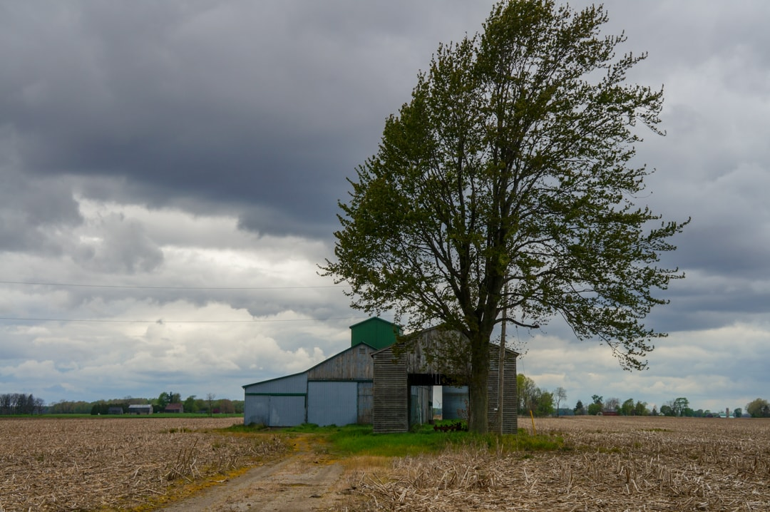 Barn and farm in chatham Kent Ontario