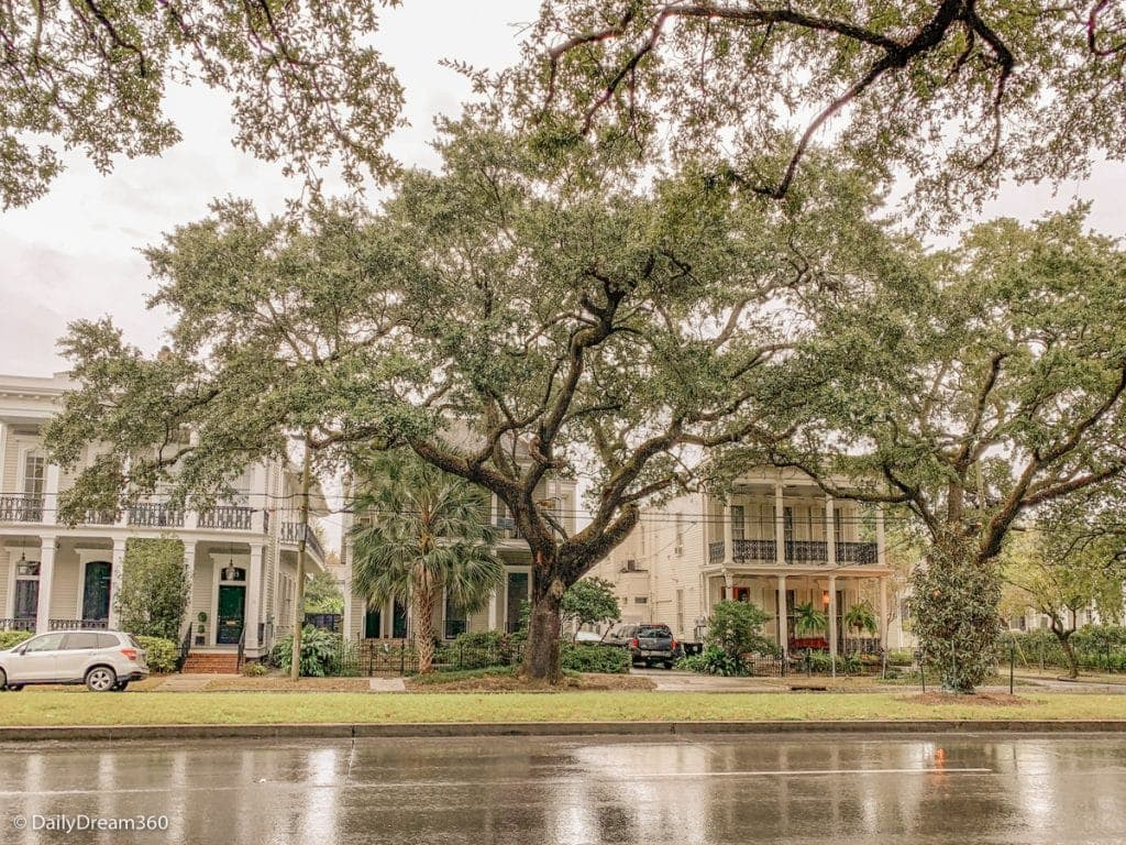 Garden District mansion with oak tree in front New Orleans