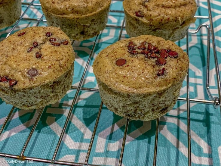 Hold the Carbs Low Carb Sugar Free Chocolate Chip Muffins