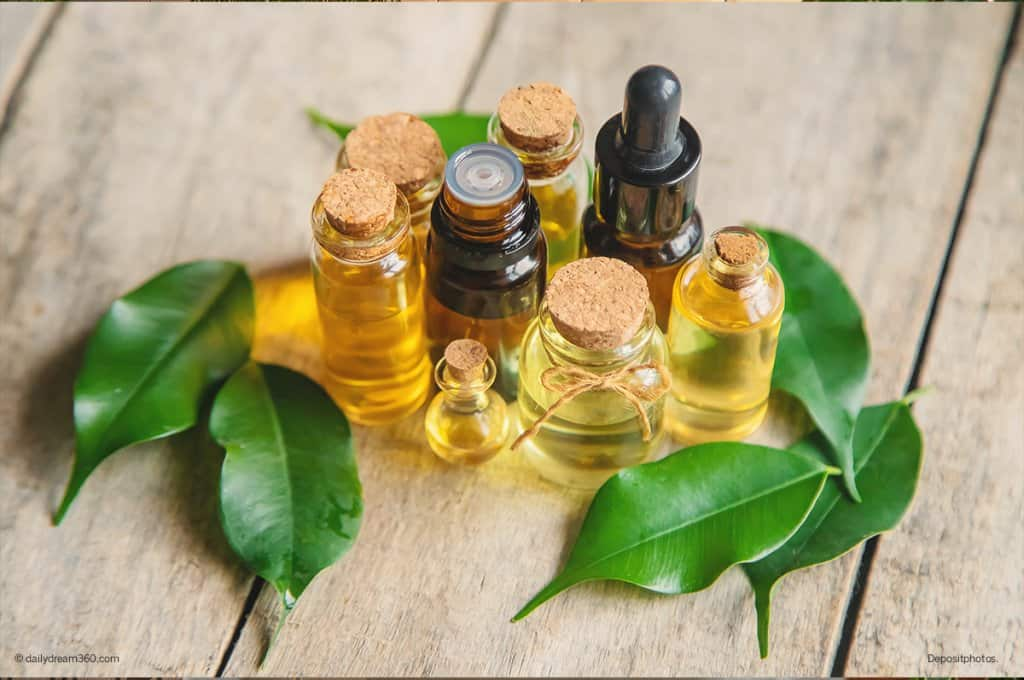 bottles of oils with leaves on wood background