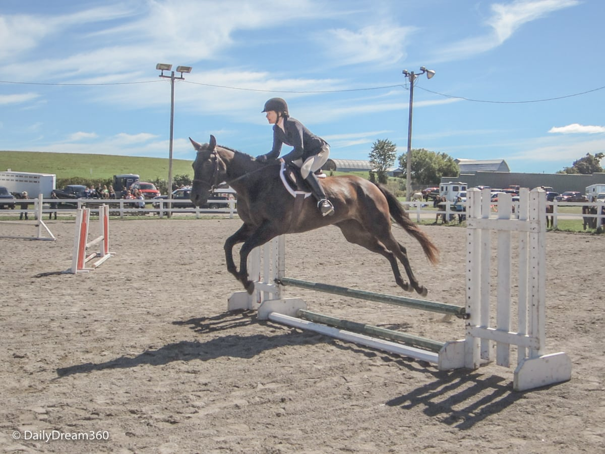 Horse jumping competition at Orno Fall Fair