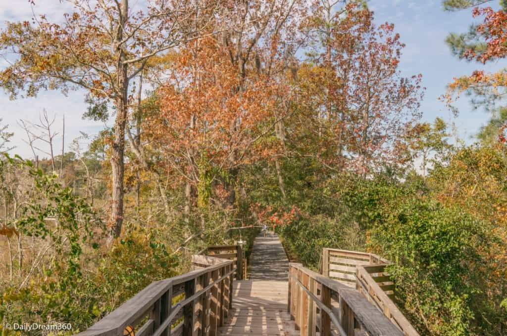 wooden trail at Pascagoula River Audubon Center Moss Point Mississippi