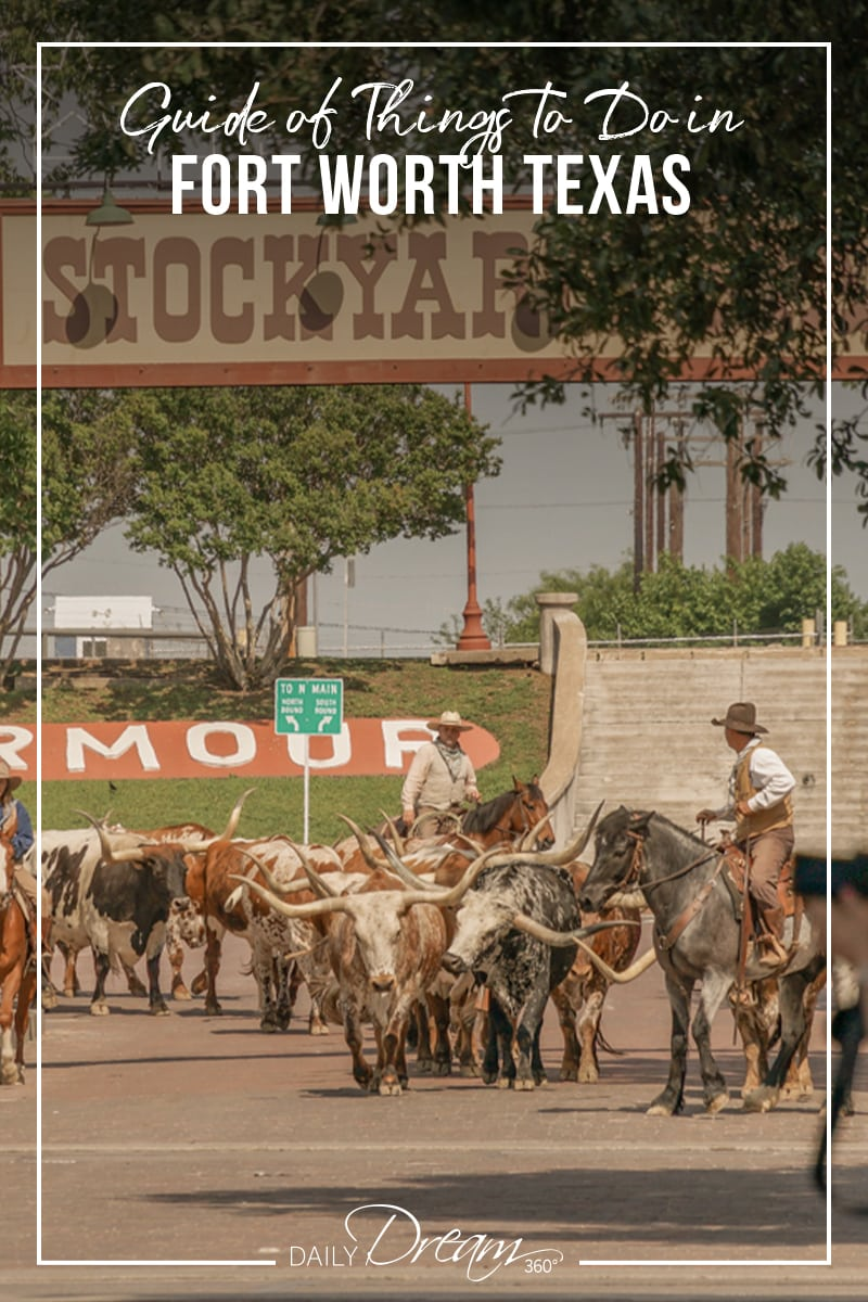 Cattle drive in Fort Worth Stockyards