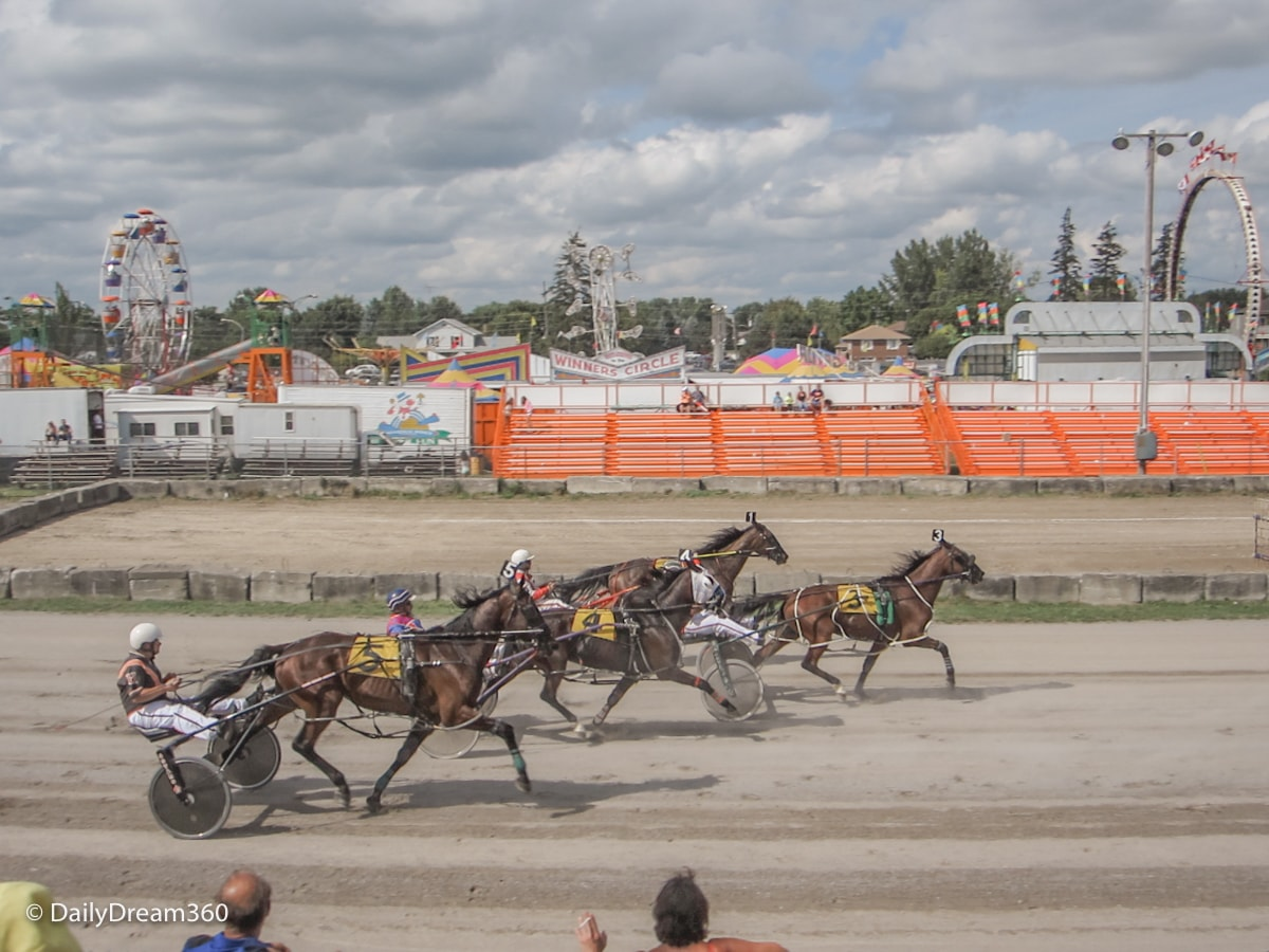 Harness Racing at Port Perry Fall Fair