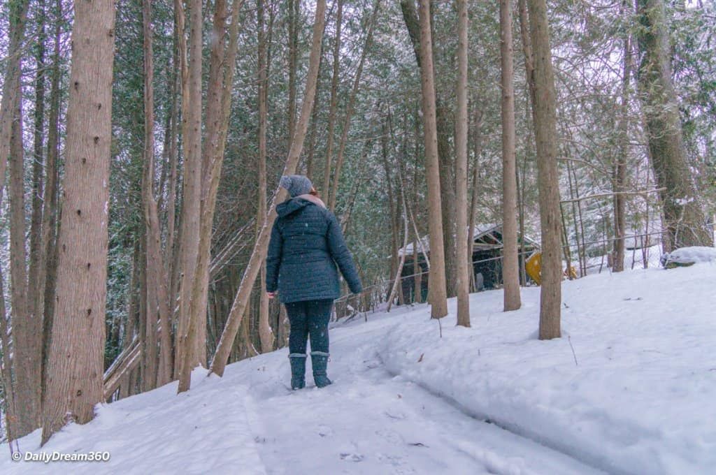 walking in snow covered forest at Hive Centre Orno